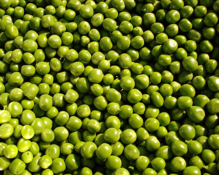 peas-vegan-protein-source