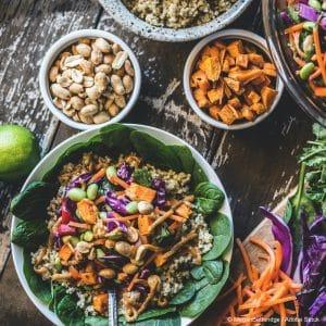 plant-based-diet-beginners